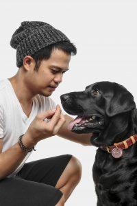 Tan and Duke of The Pet Visuals
