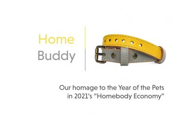 Home Buddy Colorway; our homage to pets in the pandemic
