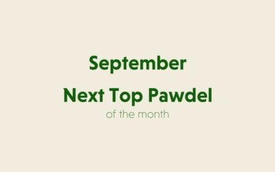 September's Next Top Pawdel of the Month