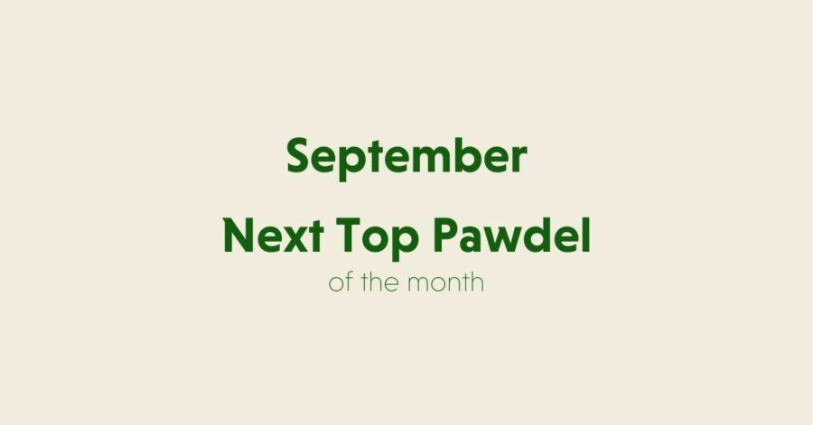 September's Next Top Pawdel